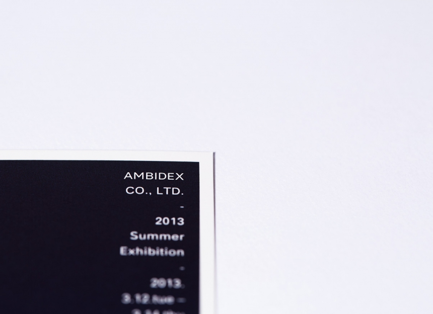 AMBIDEX 2013 SUMMER EXHIBITION DM