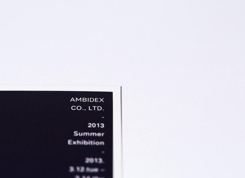 AMBIDEX 2013 SUMMER EXHIBITION DM