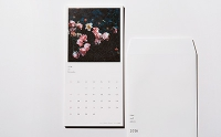 NSSG / Takahiro Motonami Calendar 2016